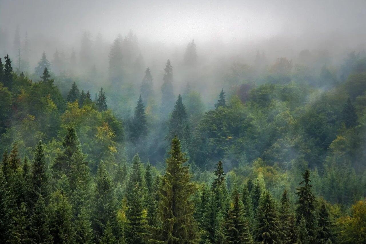 landscape-975091_1280